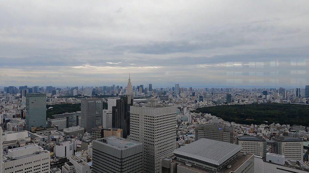 edificio gobierno metropolitano tokio vistas
